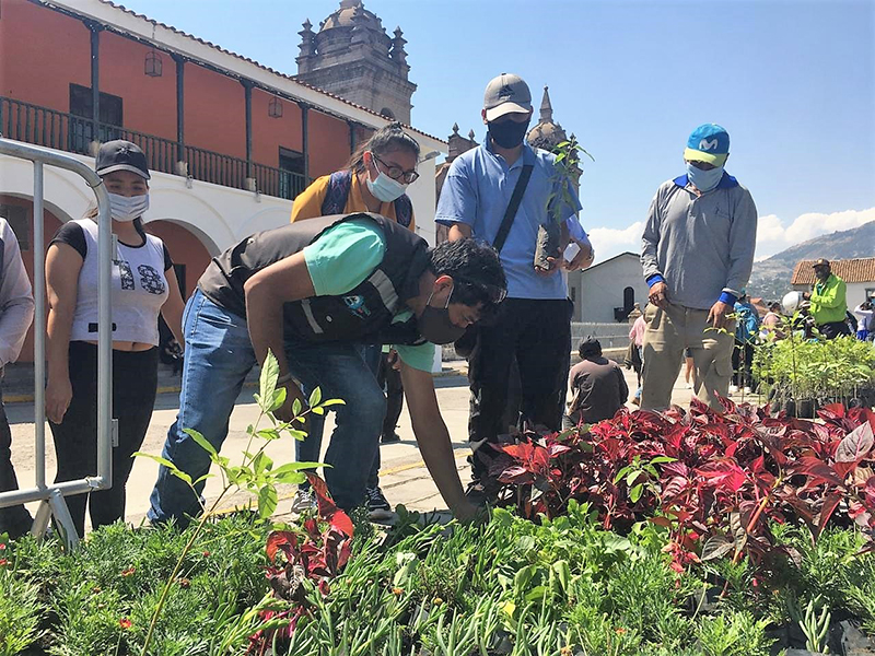 Municipalidad de Huamanga entregará más de 2000 plantas